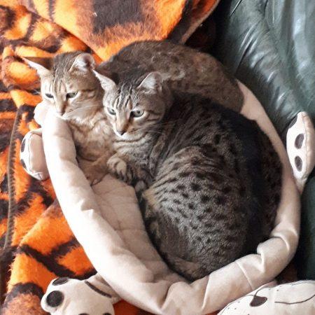 Leonie & Lilly