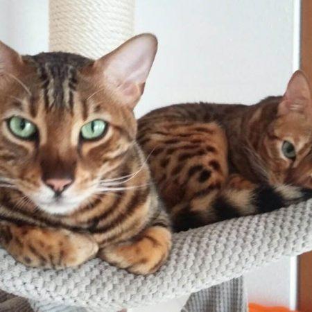 Mina und Carlo